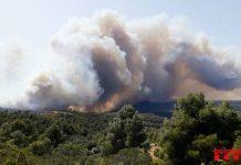 fotografia incendio forestal